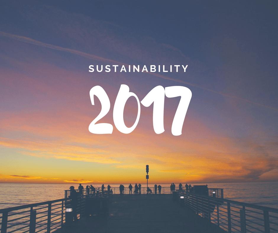 Sustainability 2017 | CSE, Centre for Sustainability and Excellence, Sustainability Academy, Sustainability Training, Sustainability trends