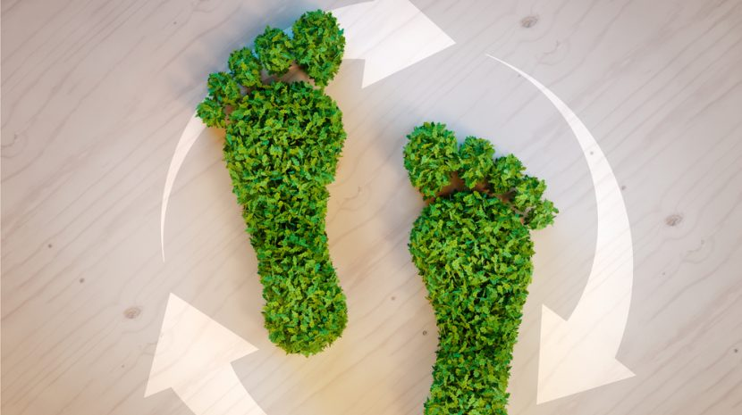 Ecological Footprint Carbon Emmissions Sustainability | CSE, CSR, Sustainability Academy