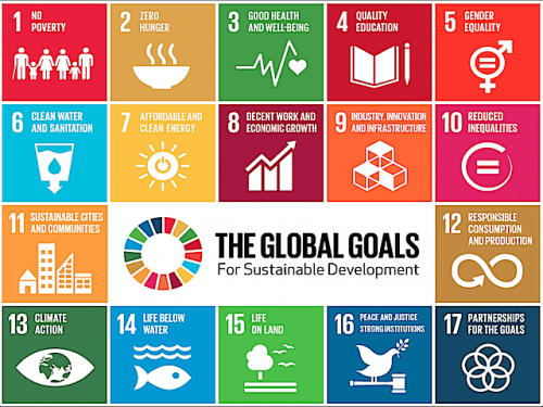 Sustainable Development Goals: The Economic Potential for Europe