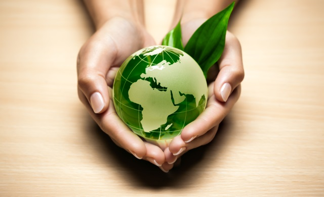 Sustainability Professionals Dubai Certified Sustainability (CSR) Practitioner Training