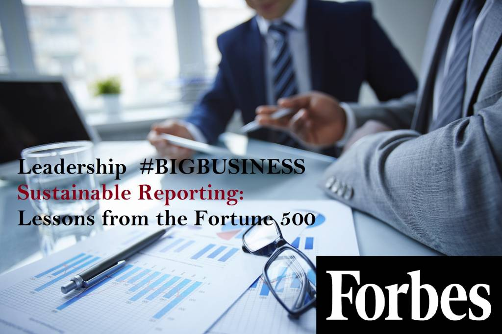 Forbes, Leadership, big business, Sustainable Reporting, Fortune 500, CSE, Centre for Sustainability and Excellence, Nikos Avlonas, Practitioner Programs, Advanced Edition 2018, Rosalinda Sanquiche, CSE North America, Comprehensive Sustainability Strategies